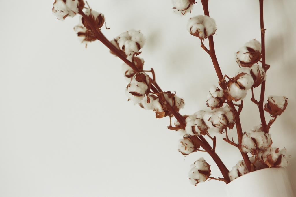 Baumwolle für Baumwolltaschen